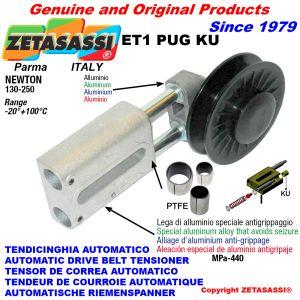 Drive belt tensioner (ptfe bushes)