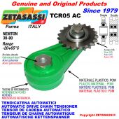 Arm chain tensioner