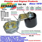 ROTARY ARM BELT TENSIONER