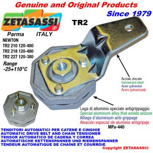 Rotary arm tensioner