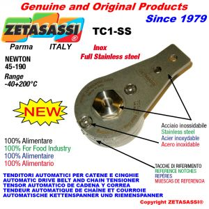 Completely in stainless steel arm tensioner
